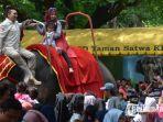 kebun-binatang-surabaya-kbs-selasa-112019.jpg