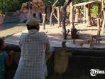 kebun-binatang-surabaya-lebaran-2021.jpg