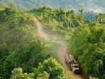 kongo-basin-forest.jpg
