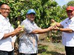 kunjungan-dirjen-hortikultura-kementerian-pertanian-republik-indonesia.jpg