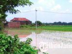 lahan-pertanian-kebanjiran-di-kediri_20180108_155300.jpg