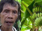 lasiyo-saifuddin-petani-lulusan-paket-b-yang-dijuluki-profesor-pisang.jpg