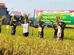 marhaen-djumadi-memanen-padi-sehat-organik-yang-dikembangkan-petani-desa-kwagean-loceret-nganjuk.jpg