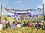 panen-raya-padi-demplot-di-desa-dukuh-dempok-kecamatan-wuluhan-kabupaten-jember_20180721_200412.jpg