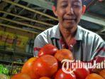 pasar-baru-tuban-sedang-menimbang-tomat_20180729_182351.jpg