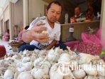 pedagang-bawang-putih-di-pasar-besar-kota-batu-ilustrasi-bawang-putih-ilustrasi-harga-bawang.jpg