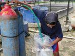pekerja-di-peternakan-ikan-koi-di-kelurahan-kauman-kota-blitar-memasukan-oksigen-ke-plastik.jpg