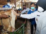 pelayanan-kesehatan-keliling-untuk-hewan-ternak-di-banyuwangi.jpg