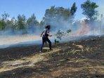 pemadaman-api-yang-membakar-lahan-parkir-wisata-kawah-wurung-bondowoso.jpg