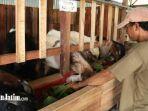 peternak-kambing-di-sidoarjo-1.jpg
