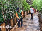 petugas-dkpp-surabaya-melakukan-perawatan-dan-pembersihan-di-kebun-raya-mangrove-wonorejo.jpg