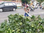 petugas-dlh-saat-mengevakuasi-pohon-mahoni-yang-tumbang.jpg