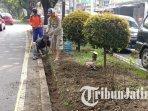 petugas-melakukan-revitalisasi-taman-di-jalan-borobudur-kota-malang.jpg