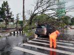 pohon-tumbang-yang-menimpa-mobil-di-depan-taman.jpg