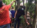 polisi-melakukan-olah-tkp-pria-yang-ditemukan-tewas-tergeletak-di-bawah-pohon-randu-tulungagung.jpg