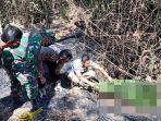 seorang-nenek-di-ponorogo-tewas-terbakar-di-ladang-bambu.jpg