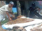 seorang-pekerja-ud-rambak-jaya-maesan-bondowoso-tengah-menjemur-kulit-sapi.jpg