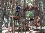 spot-foto-ranting-cinta-wisata-hutan-pinus-gogoniti.jpg