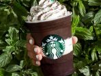 starbucks-midnight-mint-mocha-frappuccino_20180504_212504.jpg