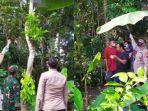 suami-ditemukan-tewas-tergantung-di-pohon-setinggi-7-meter.jpg