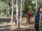 suasana-mencari-monyet-liar-di-desa-kacok-kabupaten-pamekasan-madura.jpg