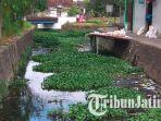 sungai-di-kecamatan-tulungagung_20181029_175430.jpg