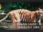 taman-safari-prigen-pasuruan_20180314_075830.jpg