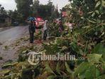 tim-bpbd-kabupaten-pamekasan-jalan-raya-sumenep-pohon-tumbang.jpg
