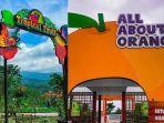 tropical-fruit-dan-all-about-orange-di-batu-love-garden.jpg