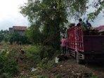 truk-yang-diduga-dipakai-mengangkut-hasil-pembalakan-pohon-sonokeling-di-jalan-nasional-tulungagung.jpg