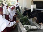 universitas-muhammadiyah-malang-umm-mengadakan-kids-on-campus1_20180502_125310.jpg