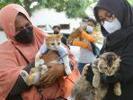 vaksinasi-rabies-gratis-untuk-hewan-peliharaan-di-banyuwangi.jpg