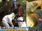 video-lama-ilmuwan-wuhan-tangani-kelelawar-mereka-mengenakan-apd-berbeda-beda.jpg