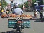 viral-pria-angkut-jenazah-ibunya-dengan-menggunakan-sepeda-motor.jpg
