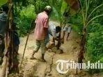 warga-dusun-komereh-dejeh-desa-pandiyangan-sampang-madura-menanam-pohon-pisang-di-tengah-jalan.jpg