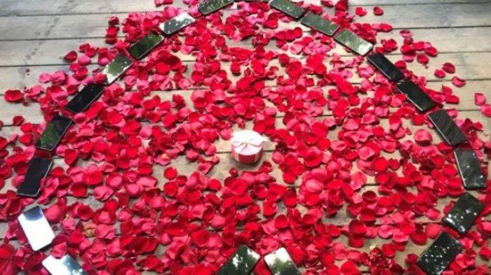 Pernah Mimpi Tentang Bunga? Jangan Senang Dulu, Sebab Ini Penjelasannya!