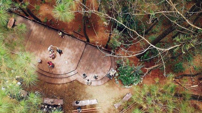 6 Wisata Kawasan Hits di Dlingo Bantul yang Tak Boleh Terlewatkan