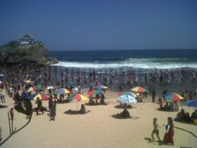 Liburan Di Pantai Kukup Wisatawan Tersengat Ubur Ubur Tribun Jogja