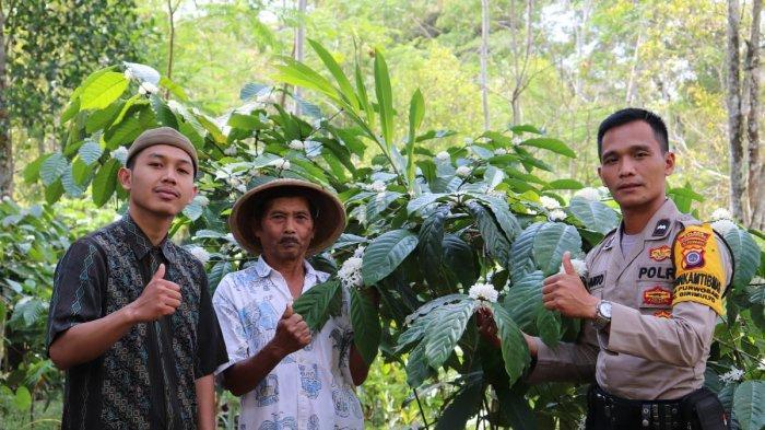 Olah Biji Kopi, Aiptu Suranto Bhabinkamtibmas Purwosari Kulon Progo Terima Penghargaan dari Kapolri