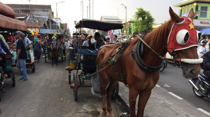 Becak Kayuh dan Andong Bakal Jadi Kendaraan Premium Malioboro