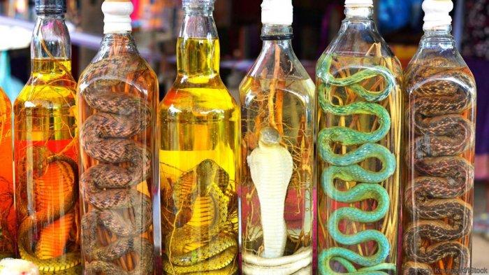 Produk minuman keras anggur ular (Wikimedia Common)