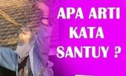 Arti Sebenarnya Kata Santuy Yang Viral Sering Dipakai Para Netizen Tak Ada Dalam Kbbi Tribun Jogja