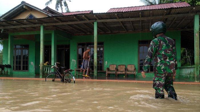 Puluhan Rumah dan Ratusan Hektare Sawah Terendam Banjir Akibat Hujan Deras di Kulon Progo