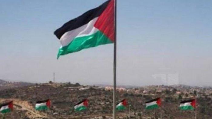 Fakta di Balik Tweet Viral 'Google Hapus Palestina dari Peta'