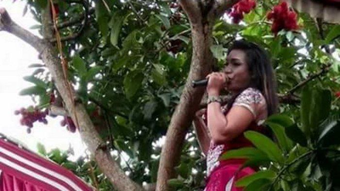 Kocak! Biduan Ini Sampai Menyanyi di Atas Pohon Saat Menghibur Acara Pernikahan