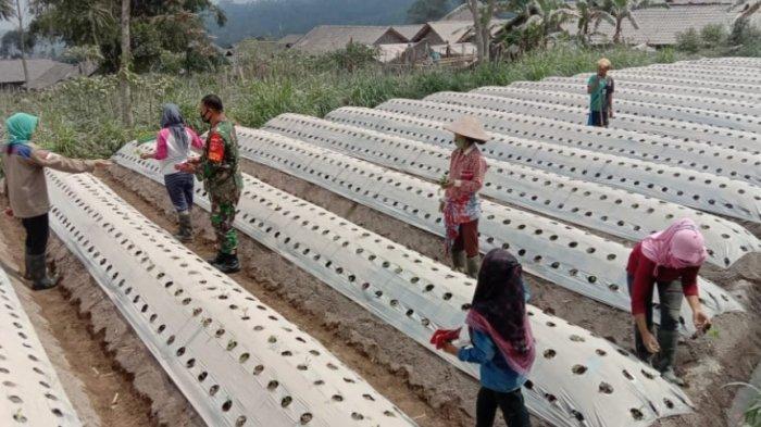 BPBD Magelang Bagikan 6.000 Masker untuk Warga Terdampak Abu Gunung Merapi