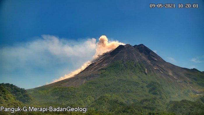Breaking News : Gunung Merapi Luncurkan Awan Panas Guguran Sejauh 1,5 Km