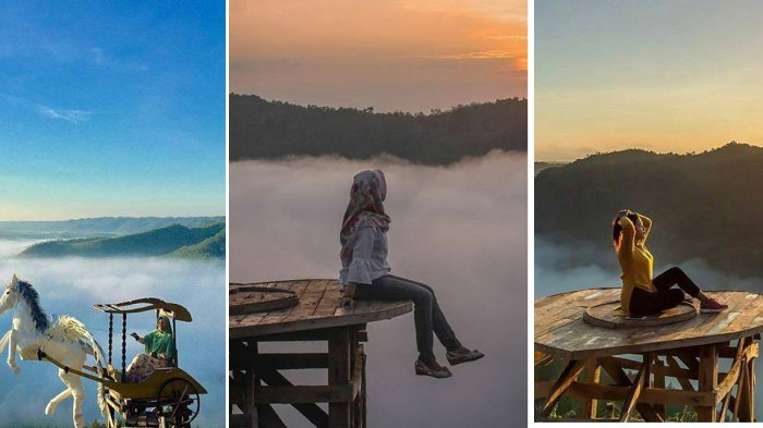 Lima Fakta Menarik Bukit Panguk Kediwung Dlingo Yang Lagi Ngehits Nomor 4 Ramah Di Dompet Tribun Jogja