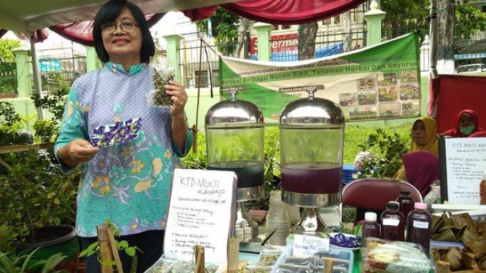 Bunga Telang Si Biru Yang Enak Dipandang Dan Disantap Tribun Jogja