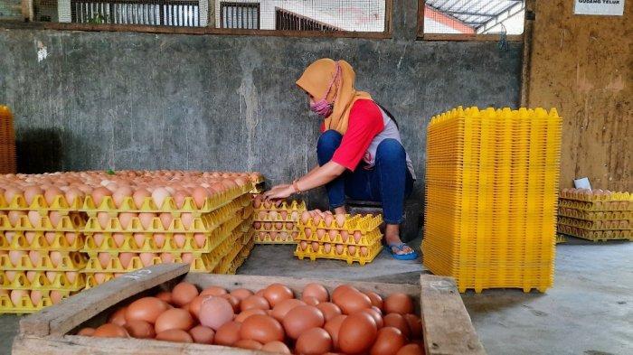 Cegah Kelangkaan Jelang Lebaran, Distributor Telur di Gunungkidul Siapkan Antisipasi